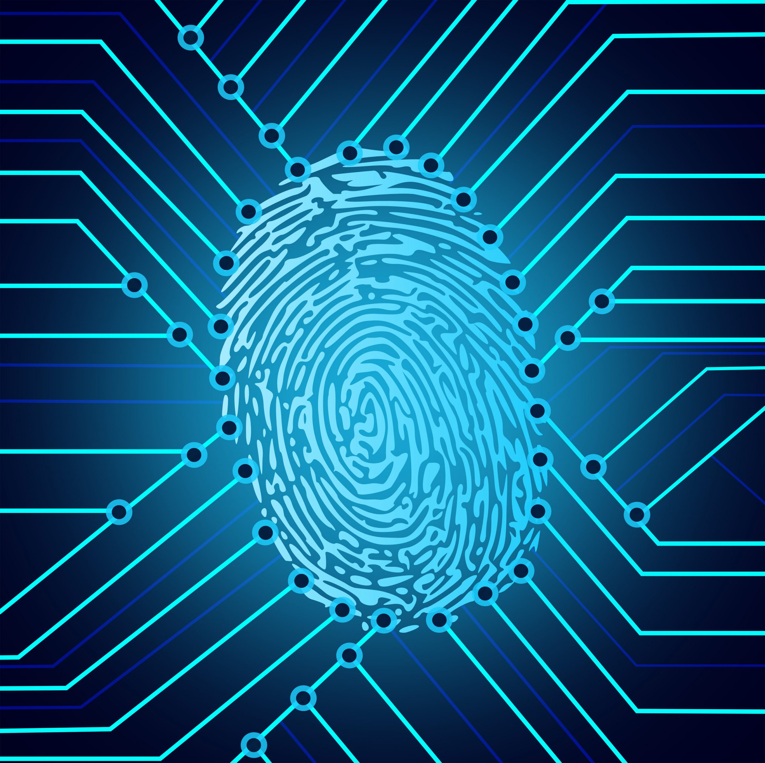 Biometric fingerprint identification system electronics