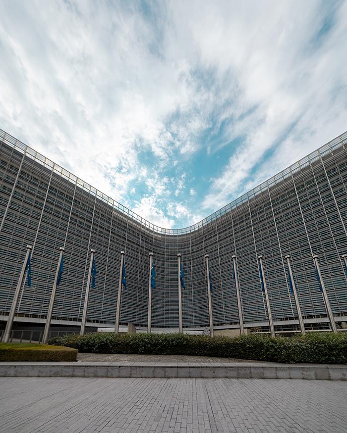La pandemia UE